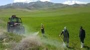اجرای عملیات مبارزه با آفات در ۲۰ هزار هکتار از مزارع قم