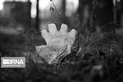 رهاکردن ماسک و دستکش آلوده باعث از بین رفتن محیط زیست میشود