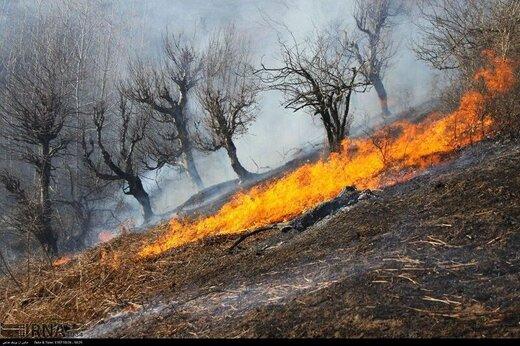 لزوم بکارگیری مواد قانونی برای کاهش اثرات آتش سوزی