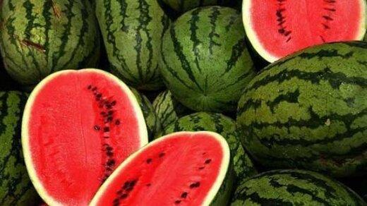 جاسازی۱۲۳ کیلو تریاک در بار هندوانه