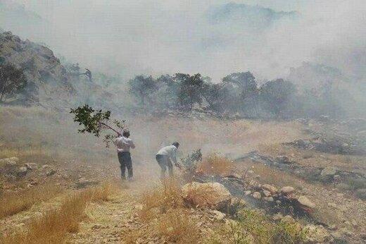 آتش سوزی در مراتع اراک نسبت به سال گذشته دوبرابر افزایش یافته است