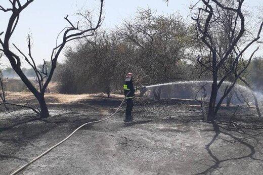 ۶ هکتار مرتع و جنگل در منطقه حفاظت شده کرایی شوشتر در آتش سوخت