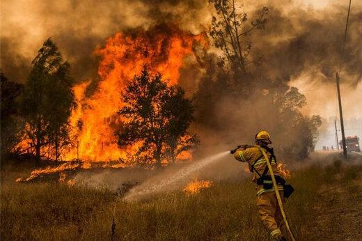 ببینید | آتش سوزیها؛ مشکوک یا طبیعی؟