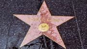 ستاره ترامپ در هالیوود سیاه شد/ عکس