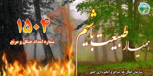 در جنگلها و مراتع آتش روشن نکنید
