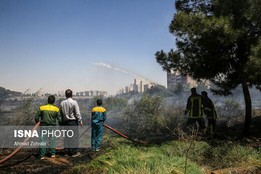 چهار مورد از آتشسوزیها در تهران عمدی بود