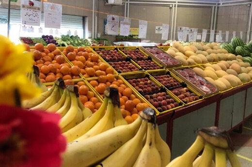 ببینید | تفاوت چندبرابری قیمت میوه در مغازه با ترهبار!