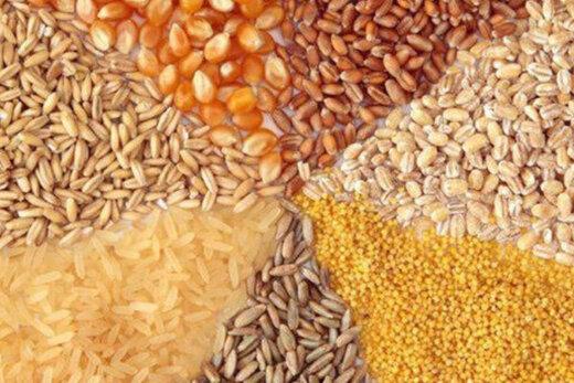 شرایط انتخاب تجار برای تخصیص ارز واردات نهادههای دامی اعلام شد