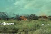ببینید | مراتع جنگلی کرمان هم طعمه آتش شد؛ باز هم کمبود امکانات برای اطفاء حریق!