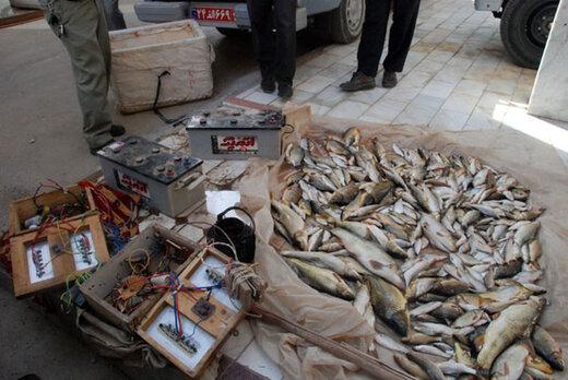 ببینید   تکذیب صید ماهی با شوک برقی در بندر کنارک