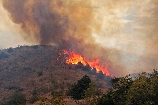 ببینید | آتش سوزی در مناطق مرتعی و اراضی جنگلی کرمان