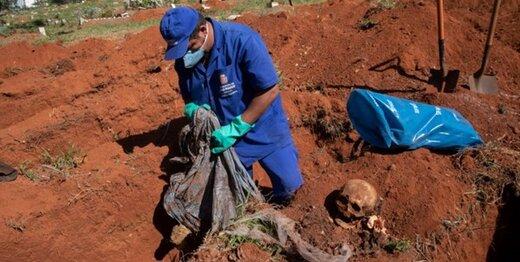 گورهای دستهجمعی در برزیل برای اجساد کرونایی/عکس
