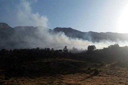 ببینید | آتش سوزی شمال اتوبان همت با آب دریاچه چیتگر خاموش شد