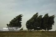 پیشبینی هواشناسی: وزش باد در بیشتر نقاط ایران ادامه خواهد داشت