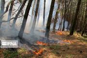 تصاویر   آتشسوزی در جنگلهای «پرهسر» رضوانشهر