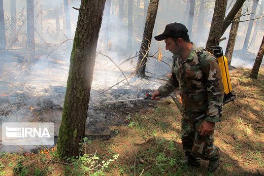 آتش سوزی در جنگل های پره سر رضوانشهر
