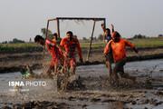 تصاویر | فوتبال در شالیزارهای شمال