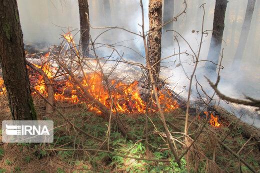 سازمان محیطزیست: ممکن است دوباره آتشسوزی داشته باشیم