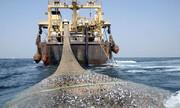 صید ترال در جنوب کشور متوقف شود