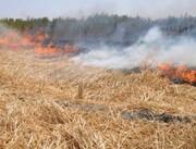 آتش زدن بقایای گیاهی پیگرد قضایی دارد