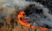 جزئیات آتشسوزی جنگلهای پاوه