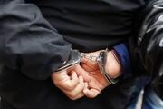 جزئیات مهم دستگیری عناصر سرویس های اطلاعاتی بیگانه و معاند در کرمان