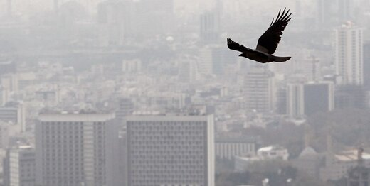 آلودگی اُزُن در هوای تهران