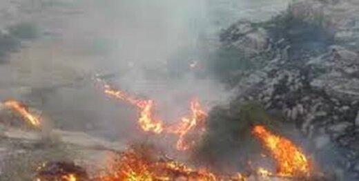زمین مجاور بازار گل ابوذر در آتش سوخت