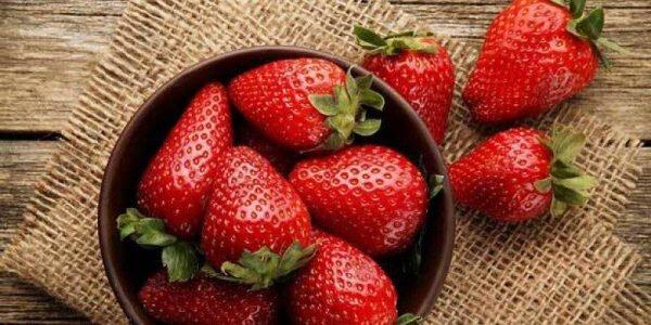 4 میوه مغذی و مفید برای رشد مو