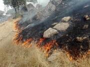جنگلهای خائیز دوباره آتش گرفت