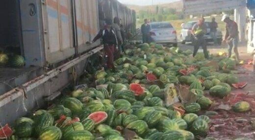 خسارت سنگین و میلیاردی صادرکنندگان میوه آذربایجانغربی از قوانین جدید ترکیه