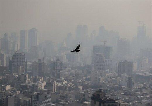 منشایابی بوی نامطبوع در تهران با سناریوهای جدید/ نقش پررنگ وارونگی دما در انتشار بو
