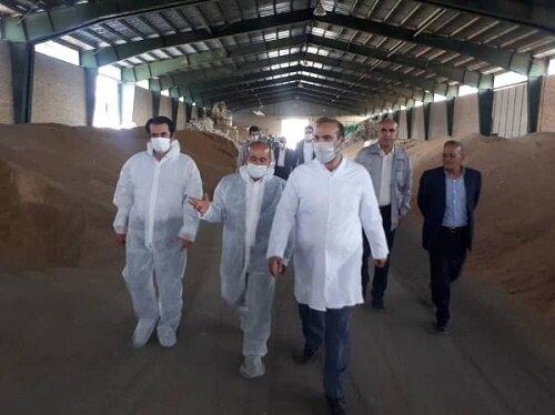 برخورد با افراد سودجو در صنعت خوراک دام و حمایت کامل از تولید محصولات دامی سالم