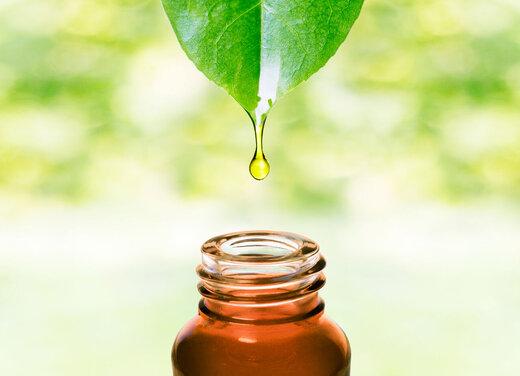 درمانهای خانگی را با روغنهای گیاهی ارگانیک امتحان کنید