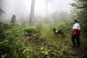 ببینید | عملیات جستجو برای یافتن دختر گمشده در جنگلهای گلستان