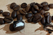 ببینید | جاسازی محموله کوکائین در دانههای قهوه