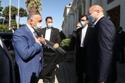 رئيس مجلس الشورى الاسلامي يلتقي رئيس الوزراء العراقي