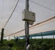 نصب سامانه هواشناسی هوشمند در ایستگاه تحقیقات انگور تاکستان