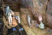 تصاویر | اولین مدارک برای اثبات وجود انسان در قاره آمریکا در 27 هزار سال پیش