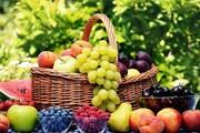قیمت میوه از باغ تا مغازه چقدر افزایش می یابد؟