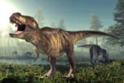 ببینید | داستان عجیب: کدام دایناسورها در ایران میزیستند؟