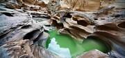 منطقه آزاد قشم الگویی برای مناطق آزاد کشور در حفاظت از محیط زیست