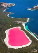 آیا صورتی ترین دریاچه جهان، قاتل انسان هاست؟ +تصاویر