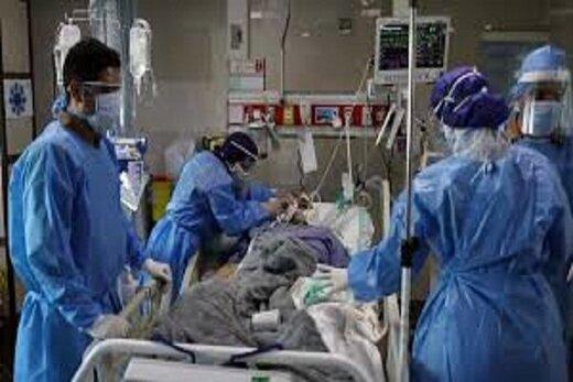 آخرین یافته درباره کرونا: ۲۴ درصد بیماران بستری فوت می کنند