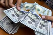 ببینید | دستگیری یکی از بزرگترین دلالان بازار ارز که در صندوق عقب ماشین مخفی میشد!