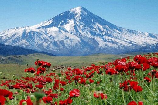 ببینید | ماجرای صدور سند وقفی برای بخشی از قله دماوند چه بود؟