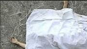 راز جسد زن جوانی که یک معتاد آن را حمل می کرد