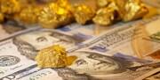 هرج و مرج در بازار سکه و ارز/ دلار و سکه رکوردهای ناباورانهای برجا گذاشتند