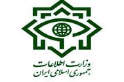 ضربه کاری وزارت اطلاعات به باند بزرگ قاچاق سلاح، سکه، ارز و مشروبات الکلی