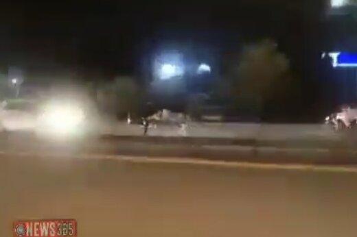 ببینید | لحظه هولناکِ تصادف شاخ به شاخِ گاو فراری با خودرو پراید!